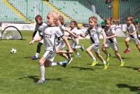 Zapisz dziecko na treningi do Węgrowa